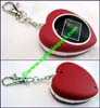 Digital Picture Keychain